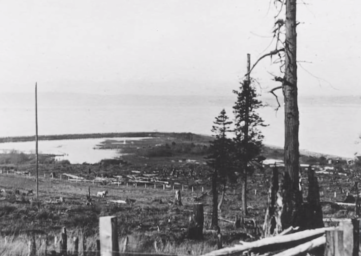 Stories from our past history of logging on Whidbey Island