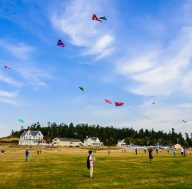 whidbey island kite festival camp casey